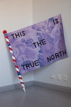 tittn-flag