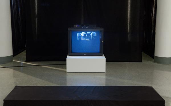 peerpleasure-install-web
